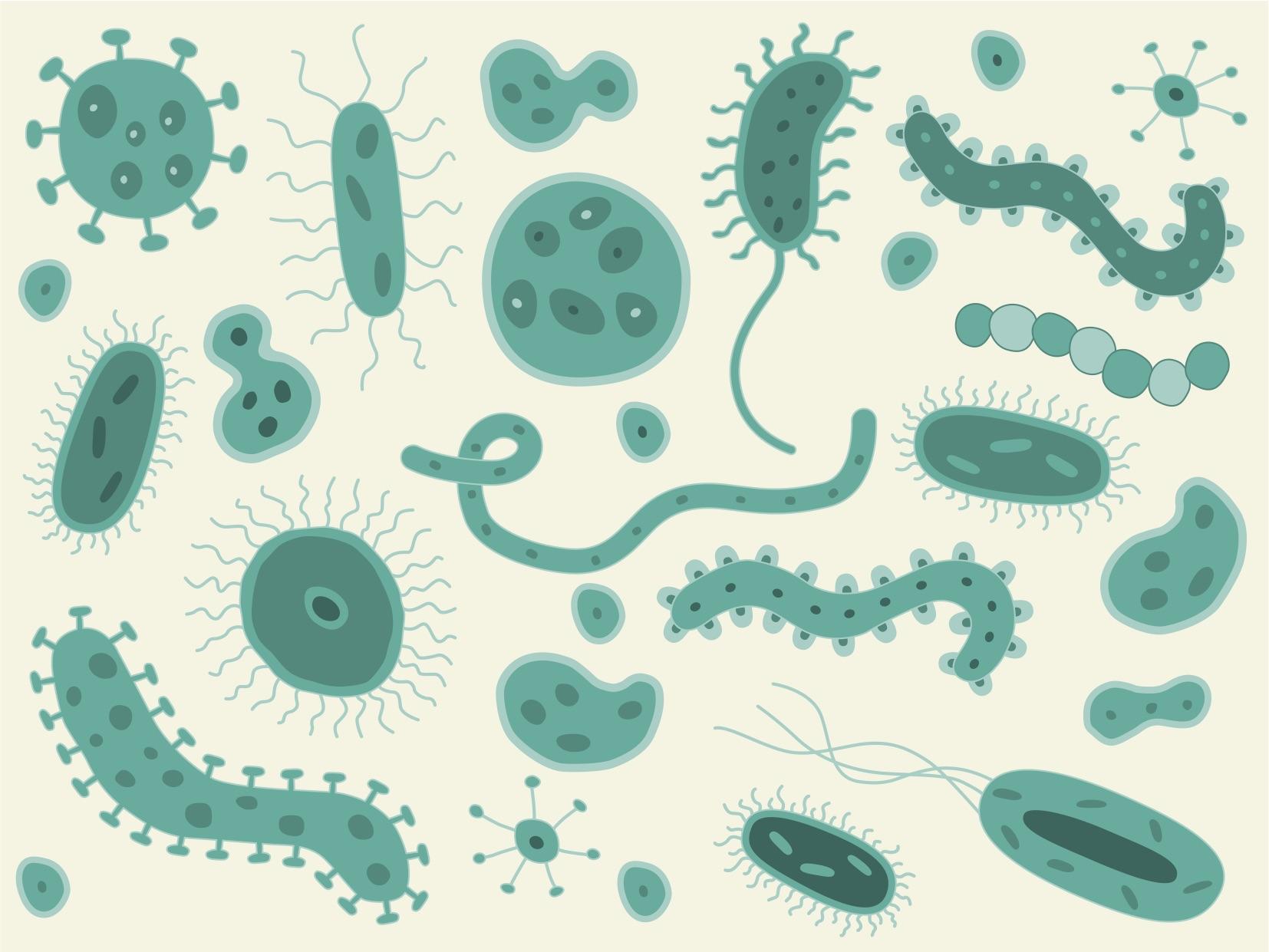 Infectious Disease Fridays #IDFridays