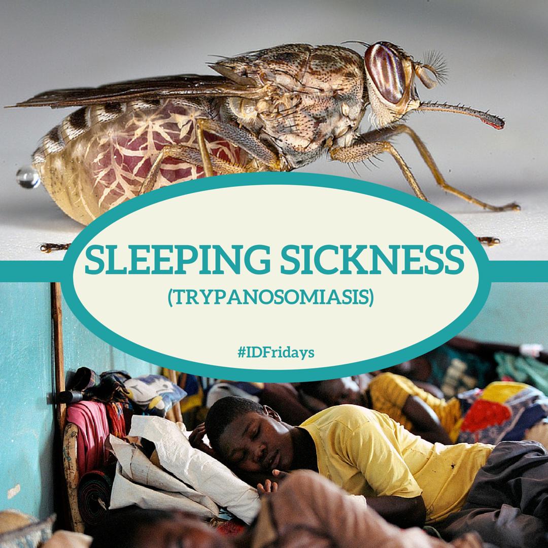 Sleeping Sickness #IDFridays