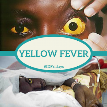 #IDFridays Week 6: Yellow Fever: https://www.drasatrust.org/yellow-fever/