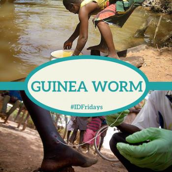 #IDFridays Week 17: Guinea Worm: https://www.drasatrust.org/guinea-worm/