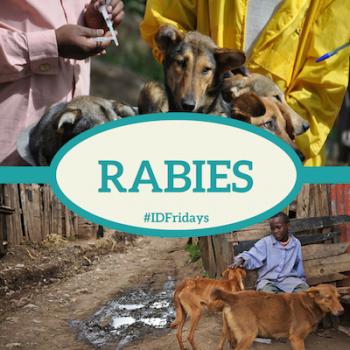 #IDFridays Week 20: Rabies: https://www.drasatrust.org/rabies/