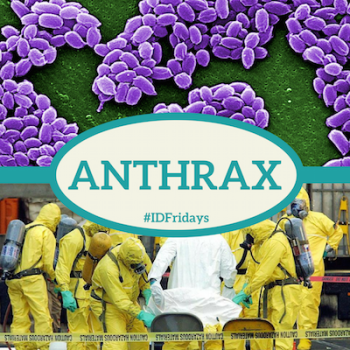 #IDFridays Week 24: Anthrax: https://www.drasatrust.org/anthrax/