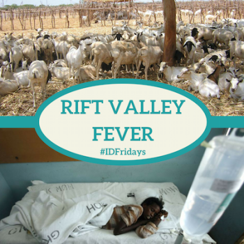 #IDFridays Week 32 Rift Valley Fever: https://www.drasatrust.org/rift-valley-fever/