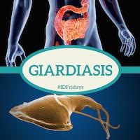 Giardiasis 200px