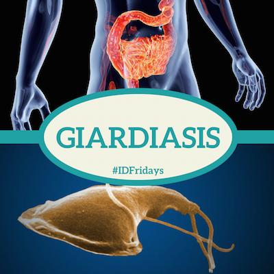#IDFridays: Giardiasis