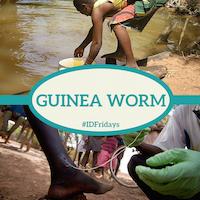 Guinea Worm 200px