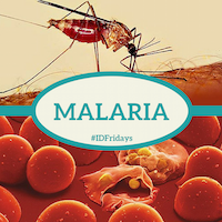 Malaria 200px 2