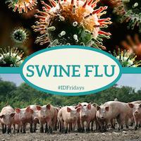 Swine Flu 200px