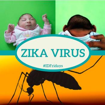 #IDFridays: Zika virus