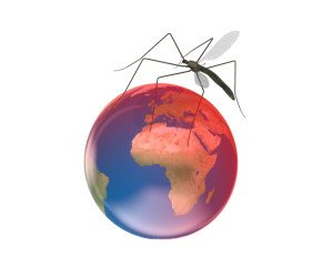 Climate change World Mosquito Day