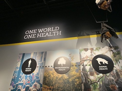 Smithsonian's Outbreak: Epidemics in a Connected World Exhibition