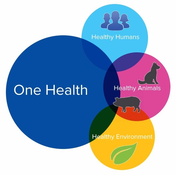One Health approach